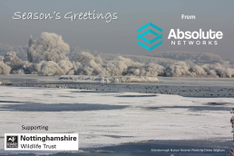 Happy Christmas from Absolute Networks